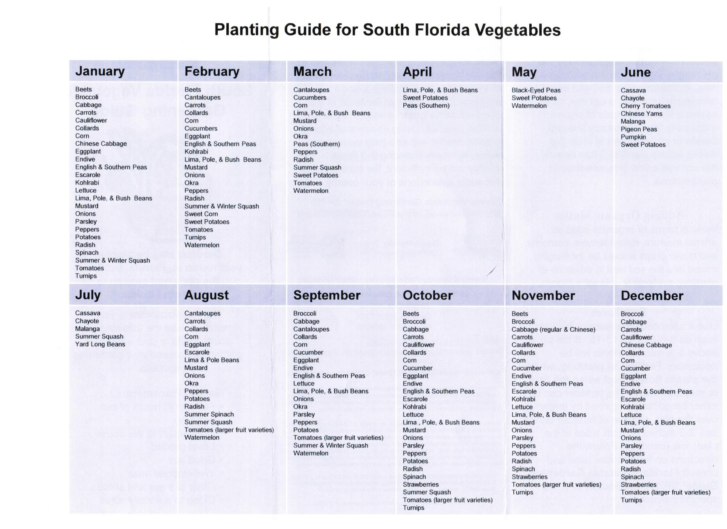 vegetable gardening guide residential real estate real estate