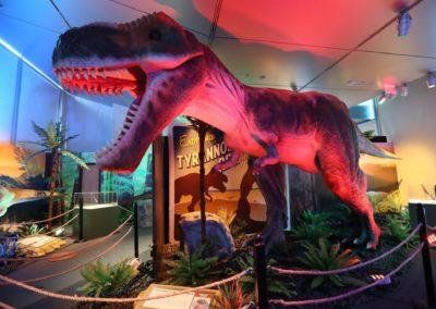 os-dinosaurs-around-world-south-florida-science-center-min